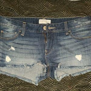 Express Short Demin Shorts